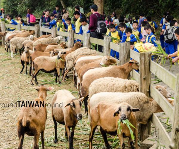 Taipei-Miaoli-Taichung Day Tour