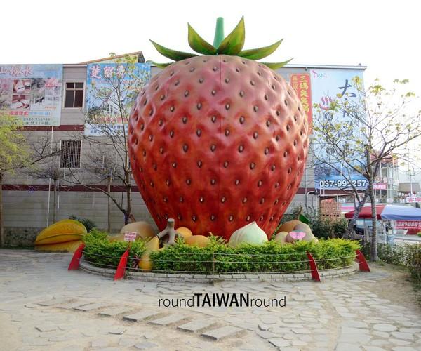 Miaoli - Strawberry Season